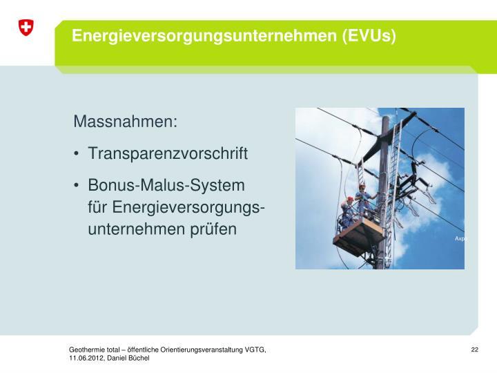 Energieversorgungsunternehmen (EVUs)