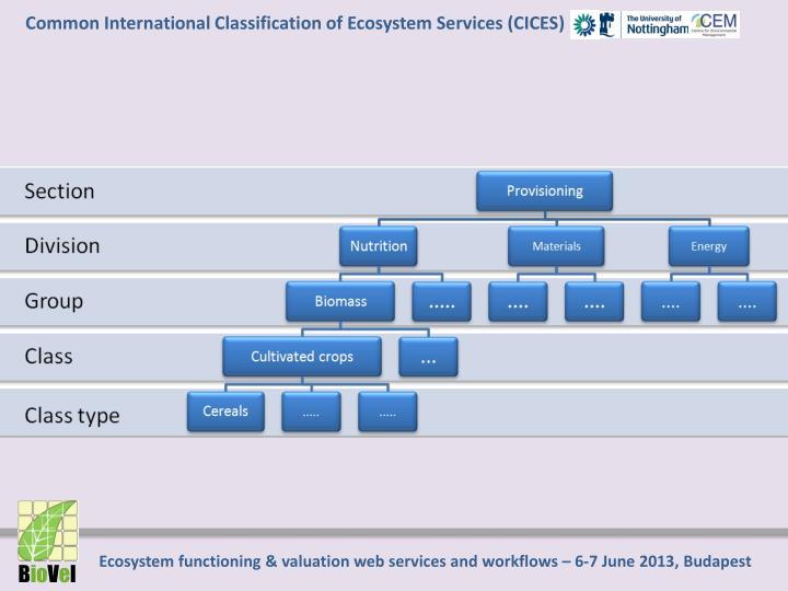 Common International Classification of Ecosystem Services (CICES