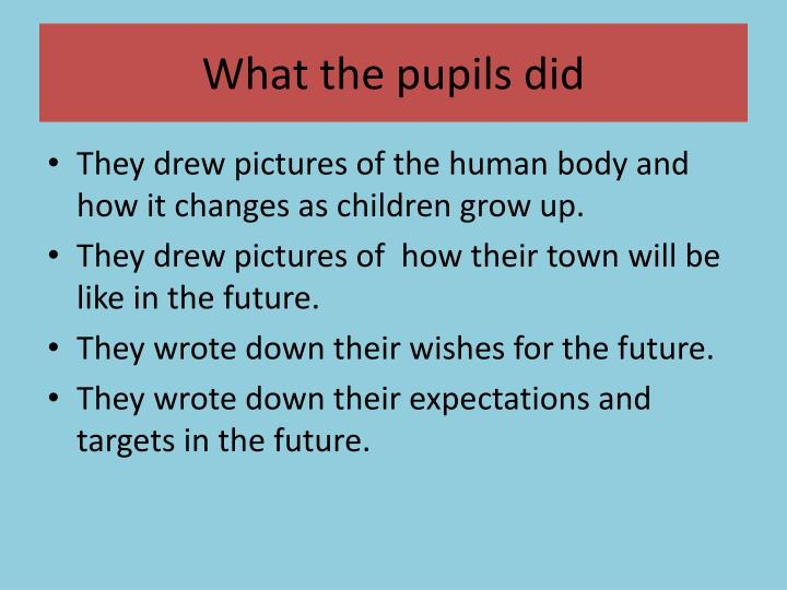 What the pupils did