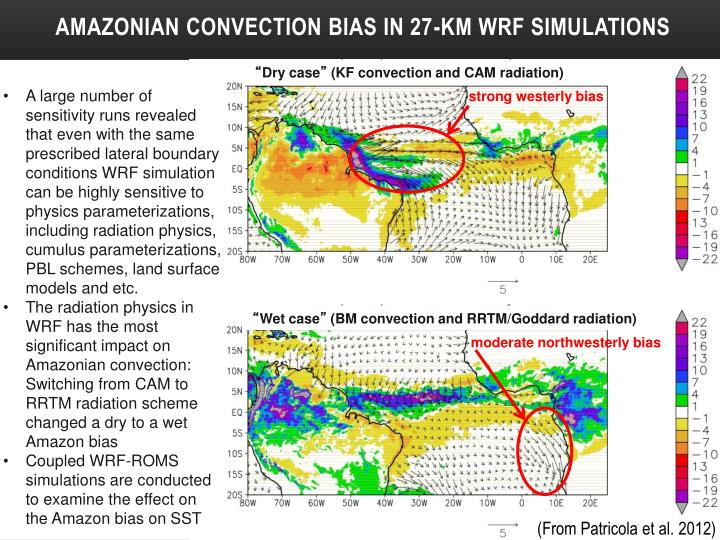 Amazonian Convection bias in 27-km WRF Simulations