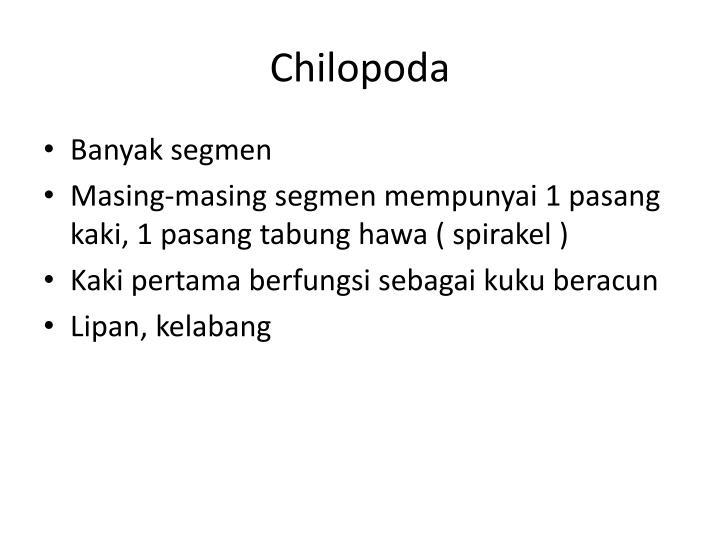 Chilopoda