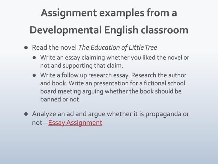 Assignment examples from a Developmental English classroom