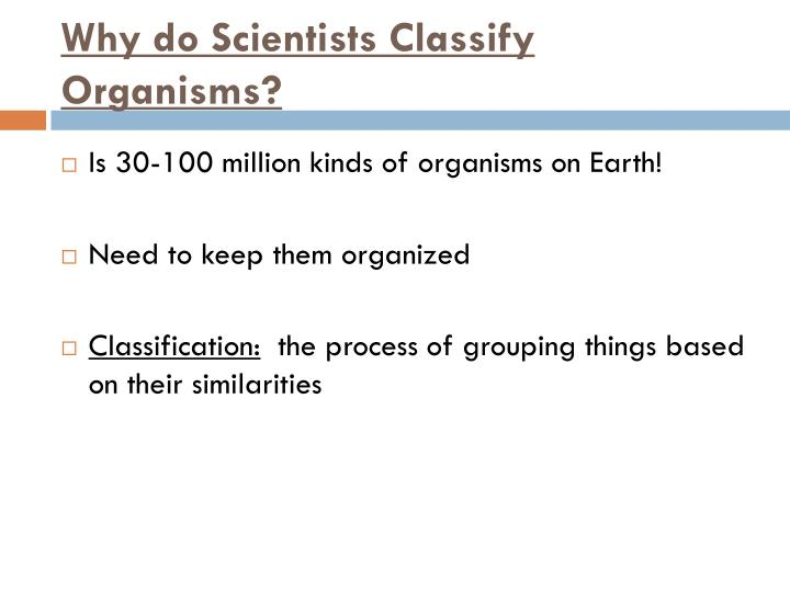 Why do Scientists Classify Organisms?