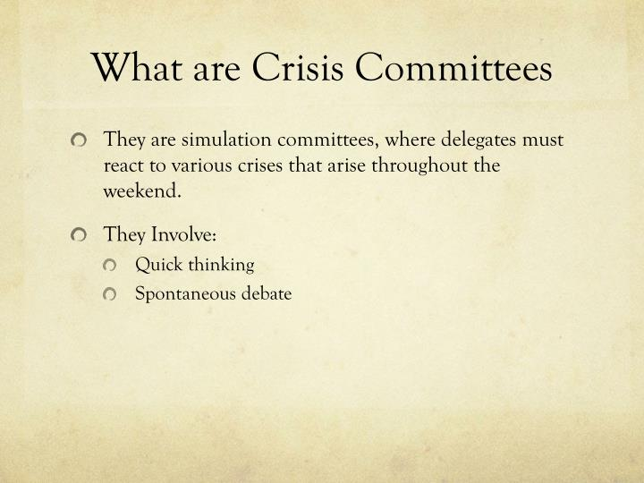 What are crisis committees