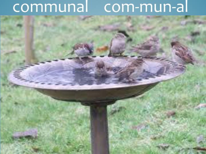 communal    com-
