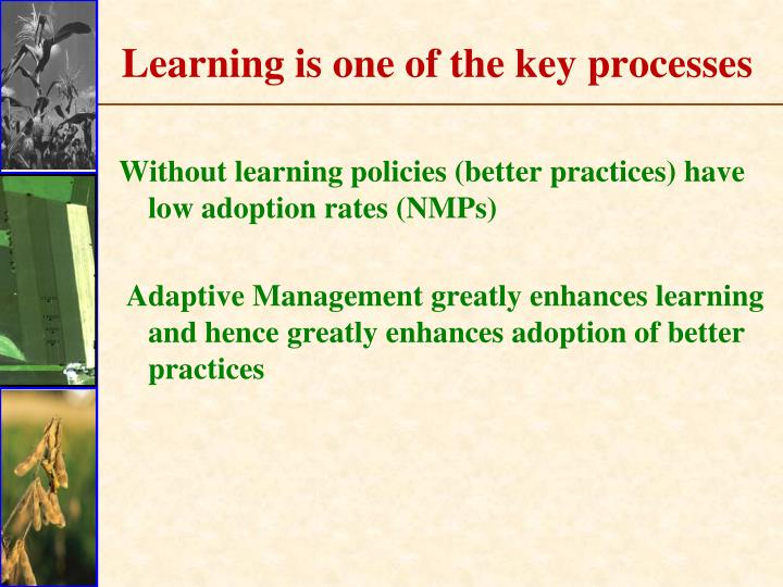 Learning is one of the key processes