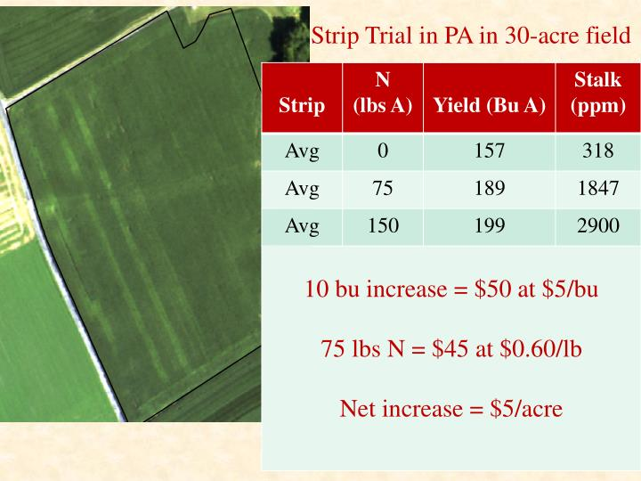 Strip Trial in PA in 30-acre field