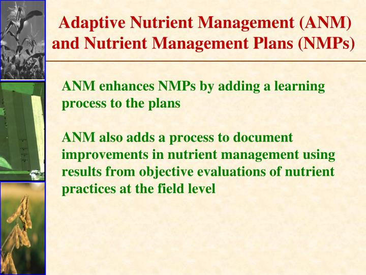 Adaptive Nutrient Management (ANM) and Nutrient Management Plans (NMPs)