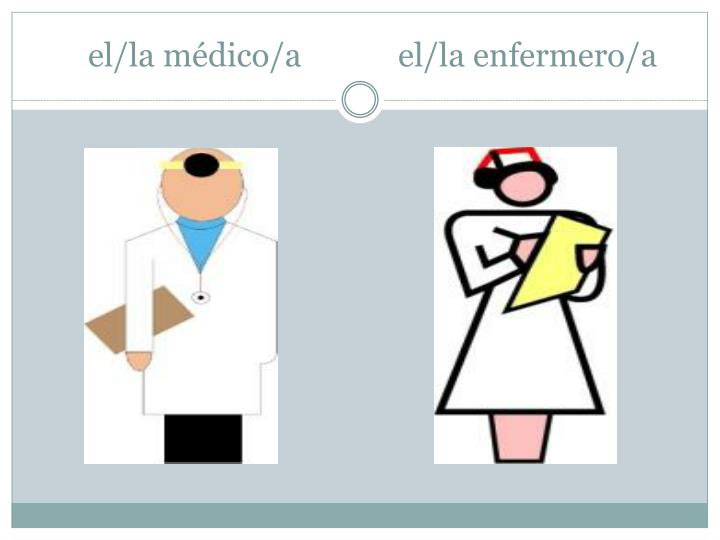el/la médico/a