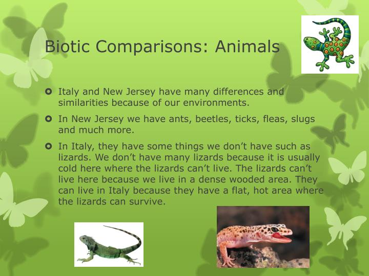 Biotic Comparisons: Animals