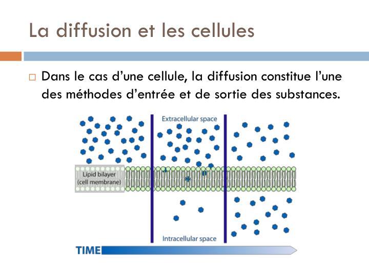 La diffusion et les cellules