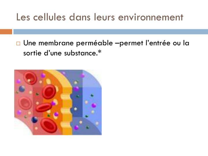 Les cellules dans leurs environnement