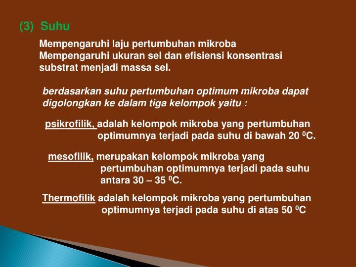 (3)  Suhu