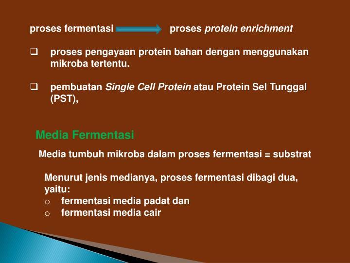 proses fermentasi proses