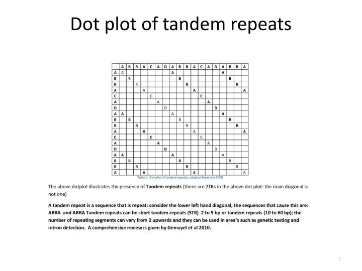 Dot plot of tandem repeats