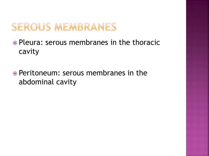 Serous Membranes