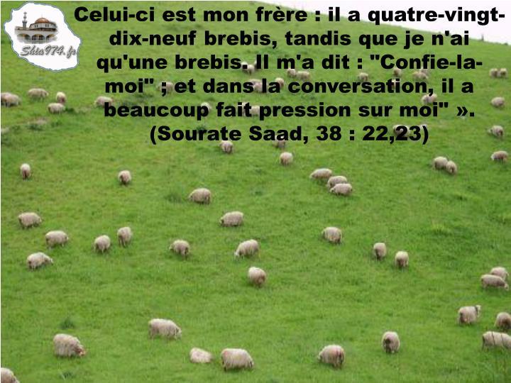 """Celui-ci est mon frère : il a quatre-vingt-dix-neuf brebis, tandis que je n'ai qu'une brebis. Il m'a dit : """"Confie-la-moi"""" ; et dans la conversation, il a beaucoup fait pression sur moi""""». (Sourate Saad, 38 : 22,23)"""