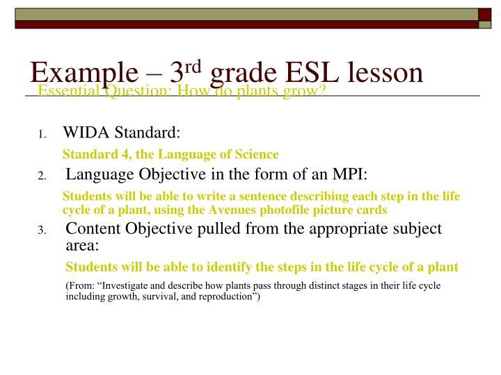 Example – 3