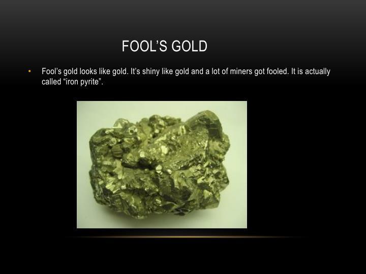 fool's