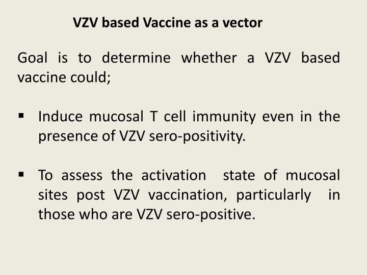 VZV based Vaccine as a vector