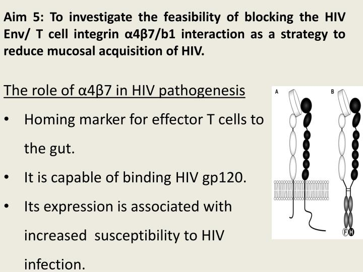 Aim 5: To investigate the feasibility of blocking the HIV