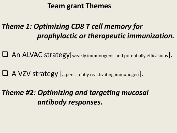 Team grant Themes
