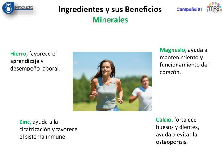 Ingredientes y sus