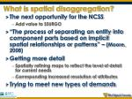 what is spatial disaggregation