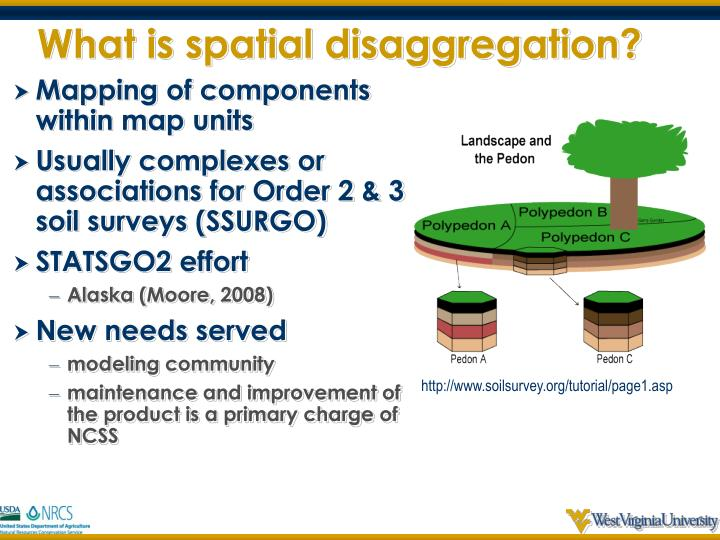 What is spatial disaggregation?