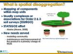 what is spatial disaggregation1