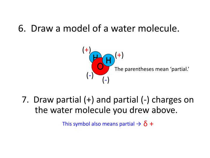 6.  Draw a model of a water molecule.