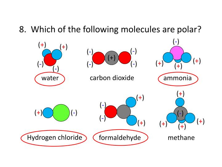 8.  Which of the following molecules are polar?