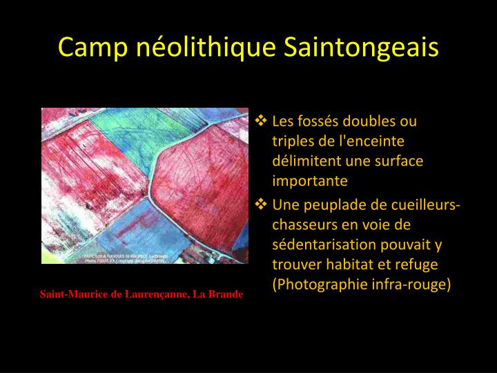 Camp n olithique saintongeais