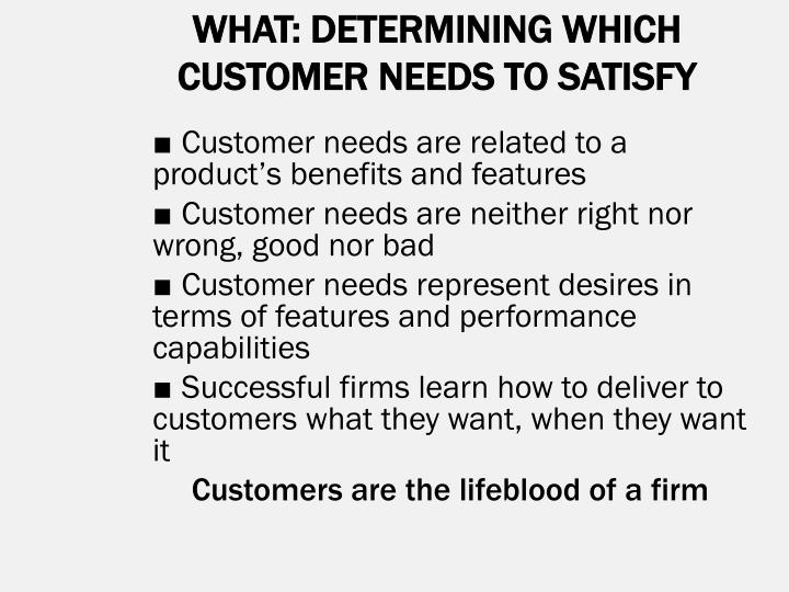 WHAT: DETERMINING WHICH CUSTOMER NEEDS TO SATISFY