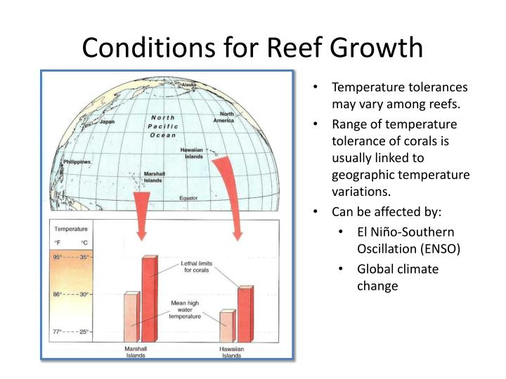 Conditions for Reef Growth