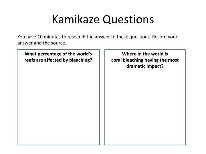 Kamikaze Questions