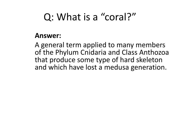 "Q: What is a ""coral?"""