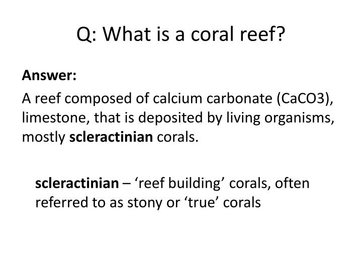 Q: What is a coral reef?