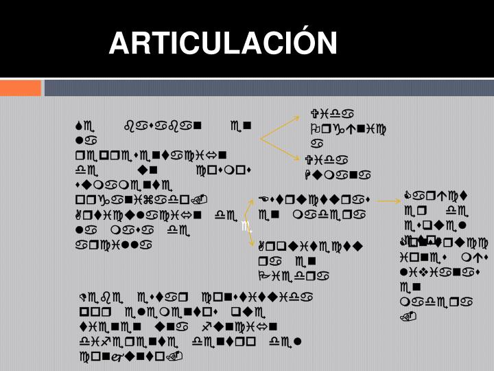 ARTICULACIN