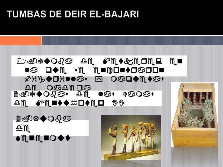 TUMBAS DE DEIR EL-BAJARI