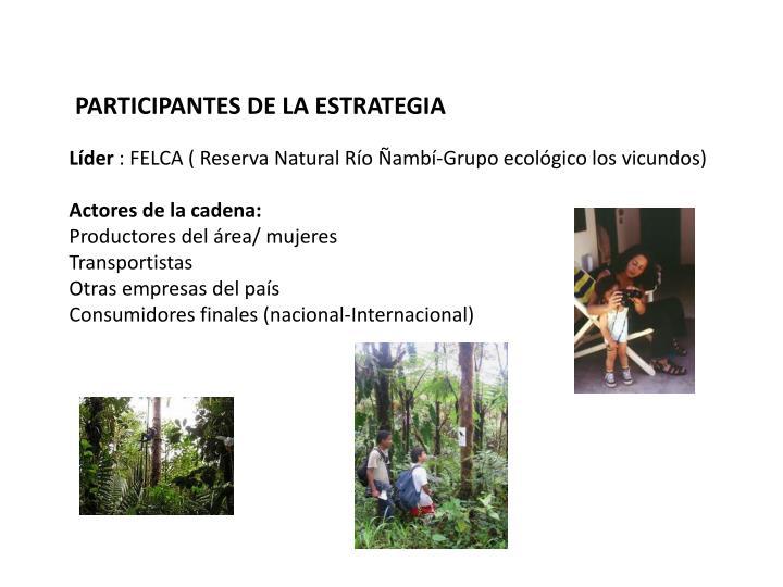 PARTICIPANTES DE LA ESTRATEGIA