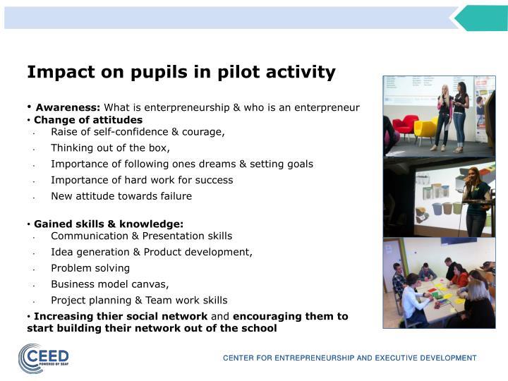 Impact on pupils in pilot activity