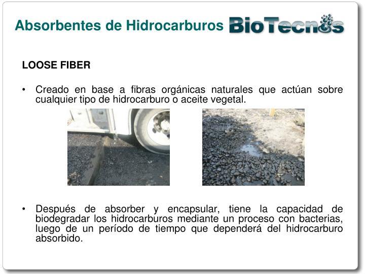 Absorbentes de Hidrocarburos