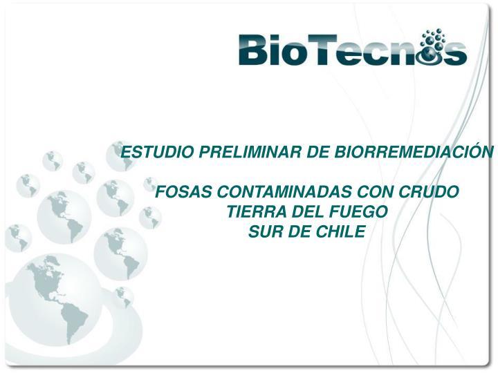 ESTUDIO PRELIMINAR DE BIORREMEDIACIÓN