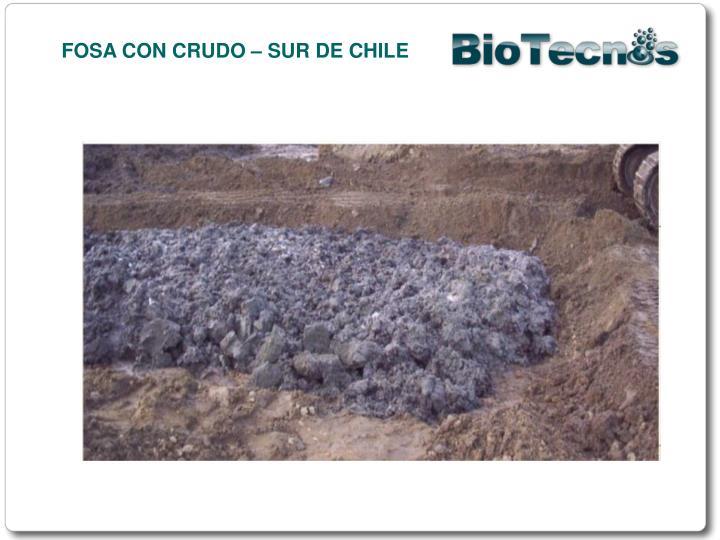FOSA CON CRUDO – SUR DE CHILE