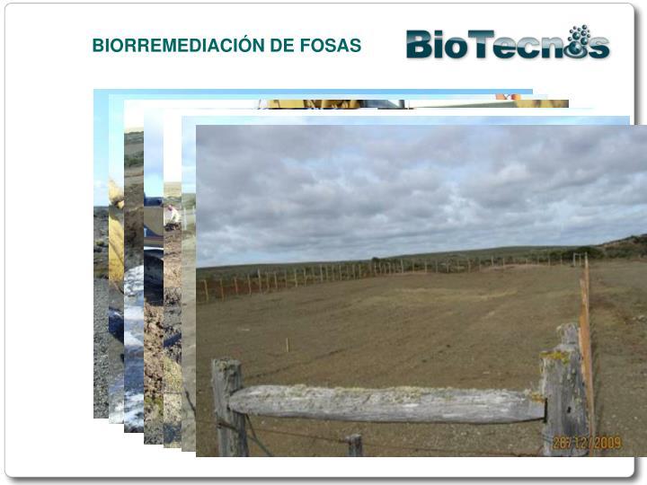BIORREMEDIACIÓN DE FOSAS