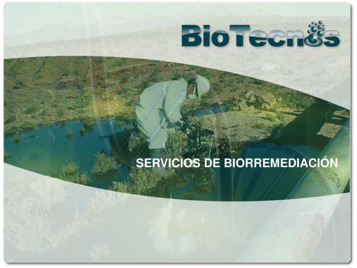 SERVICIOS DE BIORREMEDIACIÓN