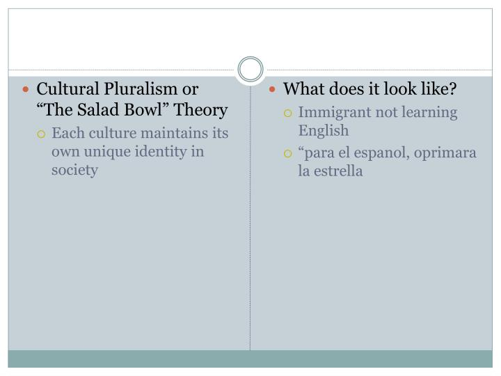 """Cultural Pluralism or """"The Salad Bowl"""" Theory"""
