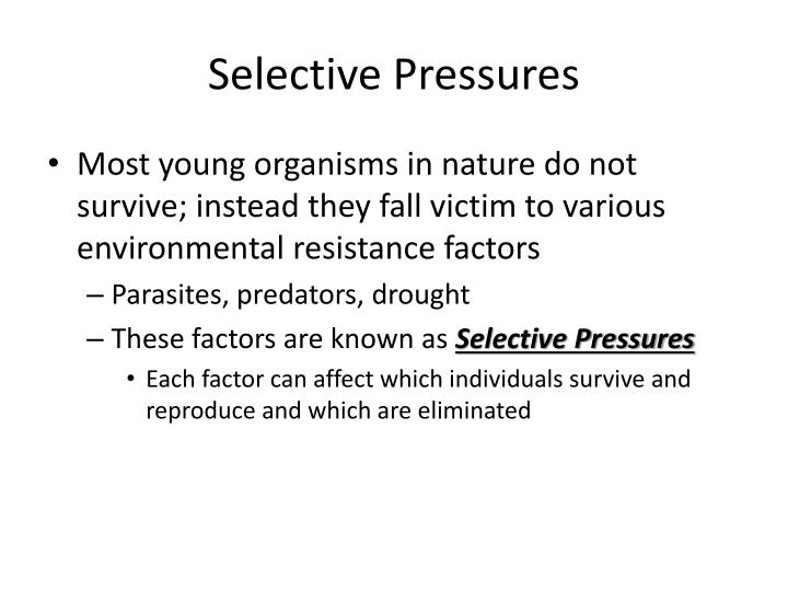 Selective Pressures