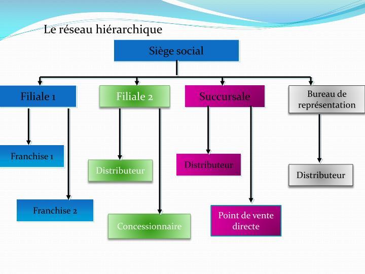 Le réseau hiérarchique